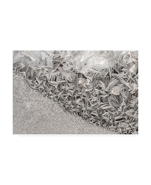 "Trademark Global Kurt Shaffer Photographs Ice crystals in the sun Canvas Art - 19.5"" x 26"""