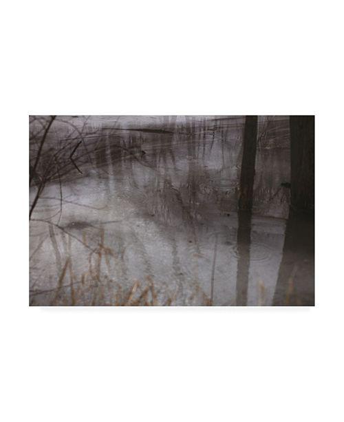 "Trademark Global Kurt Shaffer Photographs Water and Ice Reflections Canvas Art - 15.5"" x 21"""
