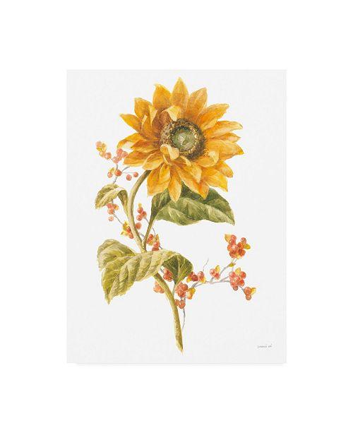 "Trademark Global Danhui Nai Floursack Autumn I on White Canvas Art - 27"" x 33.5"""