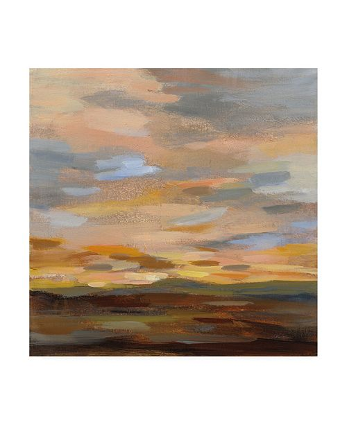 "Trademark Global Silvia Vassileva High Desert Sky III Canvas Art - 15.5"" x 21"""