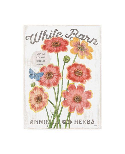 """Trademark Global Sue Schlabach White Barn Flowers III Canvas Art - 36.5"""" x 48"""""""