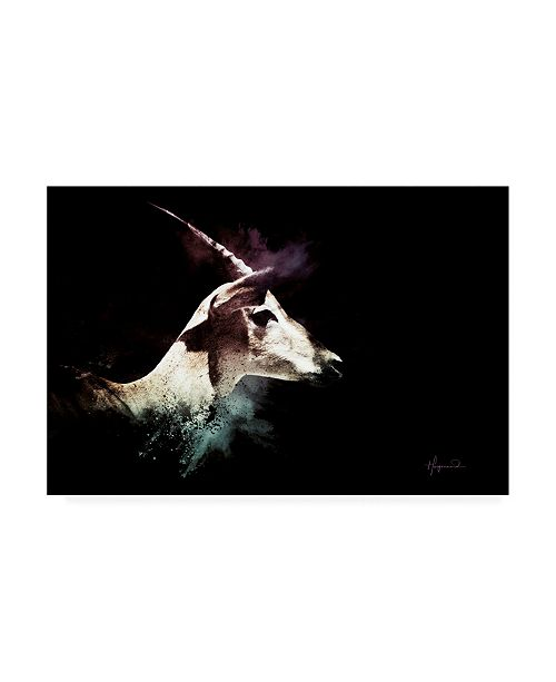 "Trademark Global Philippe Hugonnard Wild Explosion Collection - the Impala Canvas Art - 19.5"" x 26"""
