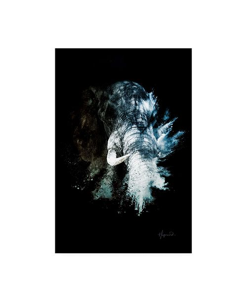 "Trademark Global Philippe Hugonnard Wild Explosion Collection - the Elephant II Canvas Art - 27"" x 33.5"""