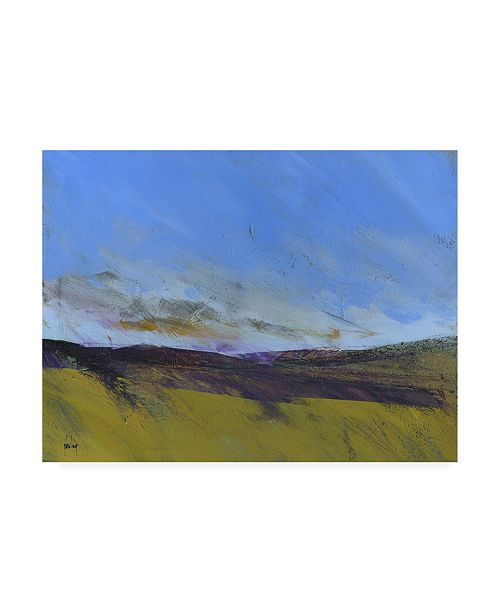 "Trademark Global Paul Baile Upland Undulation Canvas Art - 27"" x 33.5"""