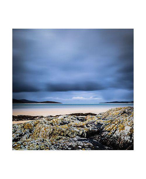 "Trademark Global Lynne Dougla Of Sand and Sea Canvas Art - 15.5"" x 21"""