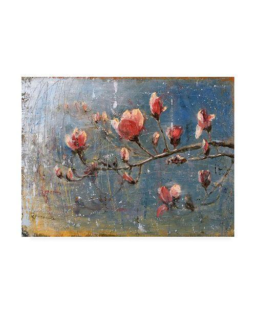 """Trademark Global Matt Flin Spring Blossoms Floral Canvas Art - 15.5"""" x 21"""""""