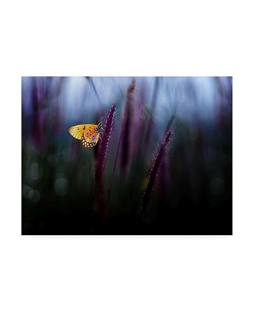 "Trademark Global Erwin Astro Hope Yellow Butterfly Canvas Art - 20"" x 25"""