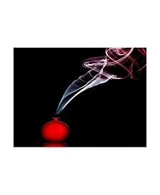 "Renee Doyle Smokin in Red Canvas Art - 37"" x 49"""
