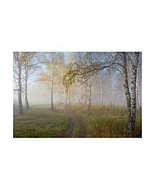"Sergey Romanchuk Autumn Mood Canvas Art - 37"" x 49"""
