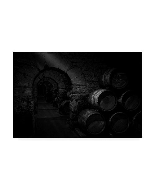 "Trademark Global Martin Zalba Wine Cellar Canvas Art - 37"" x 49"""