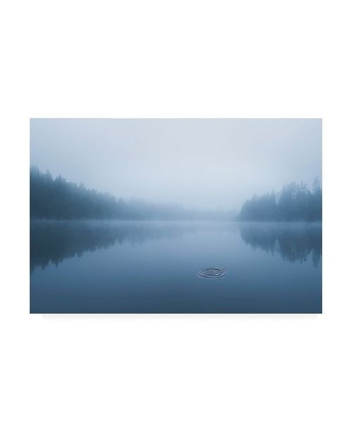 """Trademark Global Christian Lindsten Ripple in the Water Canvas Art - 37"""" x 49"""""""