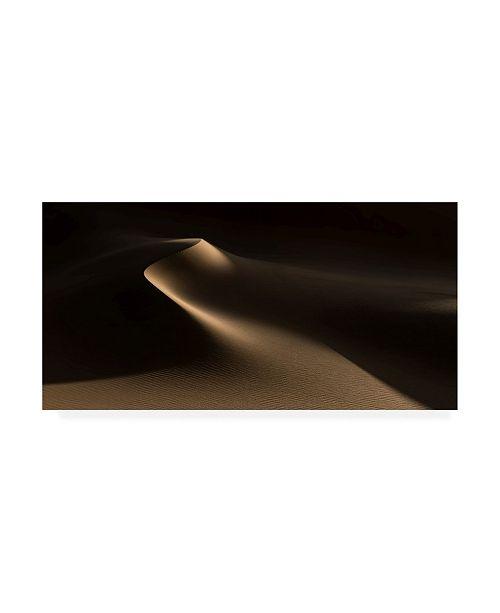 "Trademark Global Xenia Ivanoff Erb Natural Curves Namib Desert Canvas Art - 37"" x 49"""