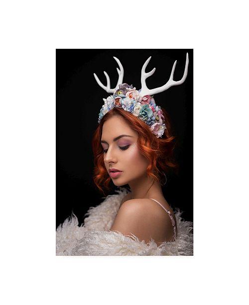 "Trademark Global Martin Krystynek Qep Princess of Forest Canvas Art - 15"" x 20"""