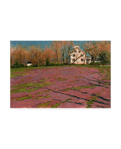 "Trademark Global Michael Budden Giligos Field Canvas Art - 37"" x 49"""