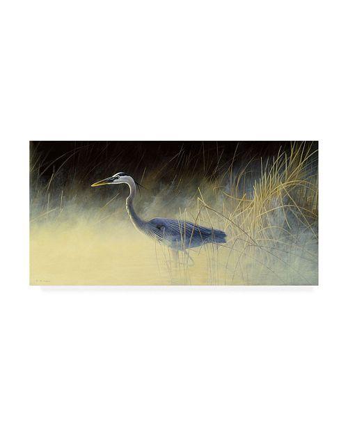 "Trademark Global Michael Budden Fishing the Mist Canvas Art - 37"" x 49"""