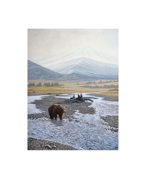 "Trademark Global Michael Budden Wilderness Walk Canvas Art - 15"" x 20"""