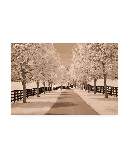 "Trademark Global Monte Nagler Fence and Trees Kentucky 2 Canvas Art - 20"" x 25"""