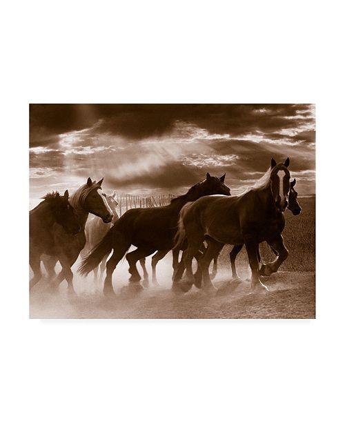 "Trademark Global Monte Nagler Running Horses and Sunbeams Rothbury Michigan Canvas Art - 20"" x 25"""