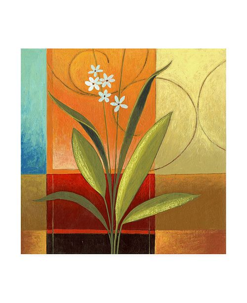 """Trademark Global Pablo Esteban Wide Palm on Patches Canvas Art - 15.5"""" x 21"""""""