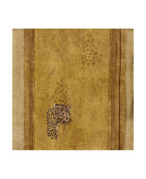 "Trademark Global Pablo Esteban Leopard Over Bold Canvas Art - 15.5"" x 21"""
