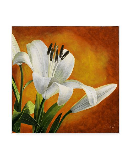 """Trademark Global Pablo Esteban White Flower Over Orange Light 2 Canvas Art - 19.5"""" x 26"""""""