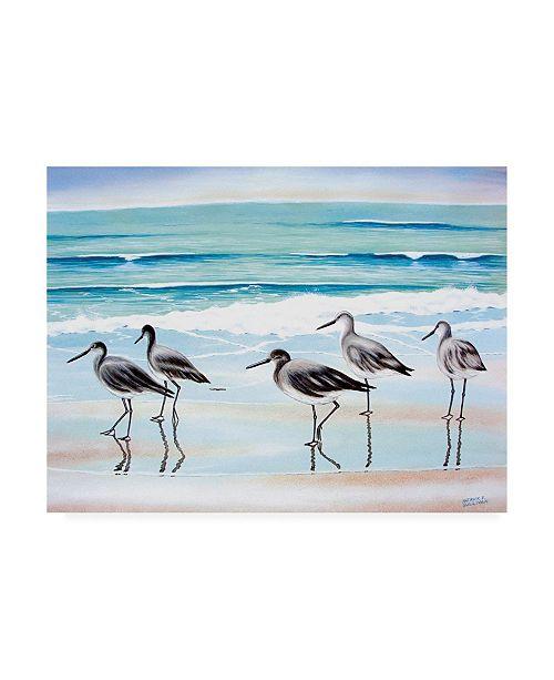 "Trademark Global Patrick Sullivan 5 Birds Canvas Art - 36.5"" x 48"""