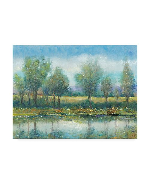 "Trademark Global Tim Otoole River Reflection Ii Cloudy Blue Sky Canvas Art - 27"" x 33.5"""