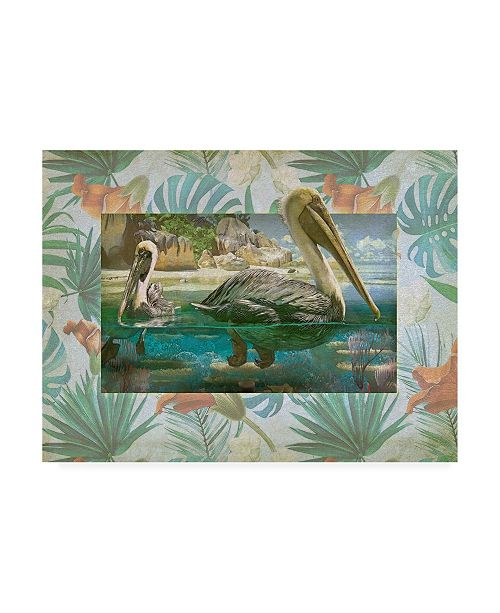 "Trademark Global Steve Hunziker Pelican Paradise V Canvas Art - 27"" x 33.5"""
