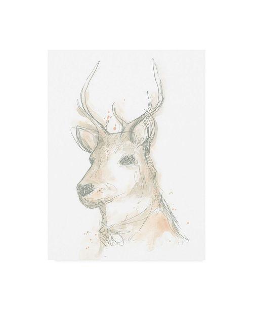"""Trademark Global June Erica Vess Deer Cameo III Canvas Art - 27"""" x 33.5"""""""
