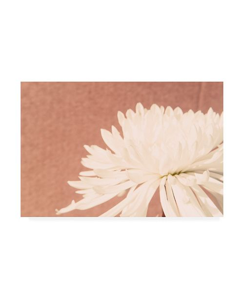 "Trademark Global Jason Johnson Floral Canvas Art - 15.5"" x 21"""