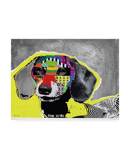 "Trademark Global Michel Keck Dachshund Abstract Canvas Art - 19.5"" x 26"""