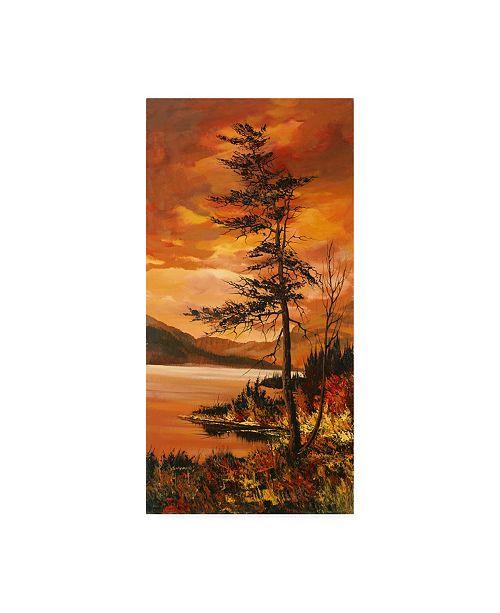 "Trademark Global Peter Snyder Haliburton Highlands Canvas Art - 36.5"" x 48"""