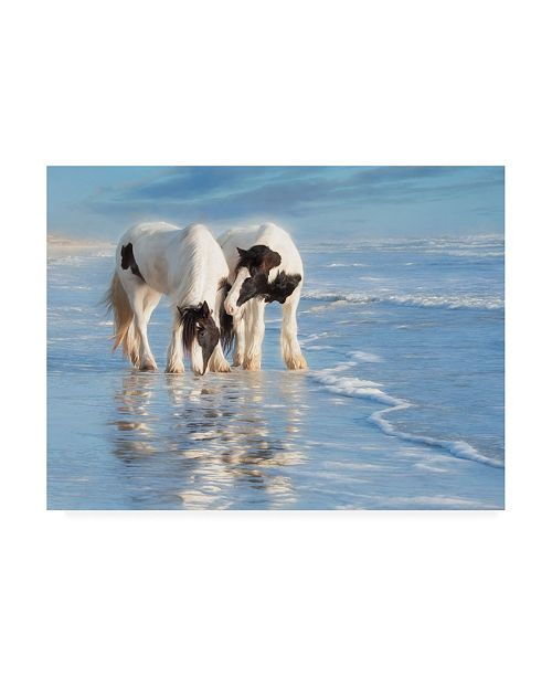 "Trademark Global PH Burchett Water Horses I Canvas Art - 27"" x 33.5"""