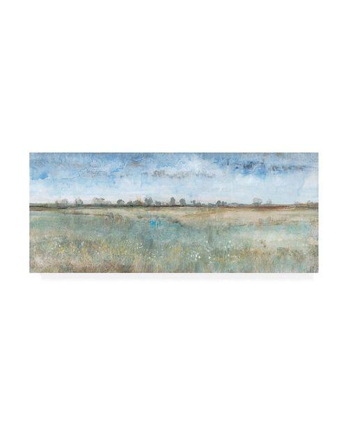 "Trademark Global Tim OToole Open Field I Canvas Art - 19.5"" x 26"""