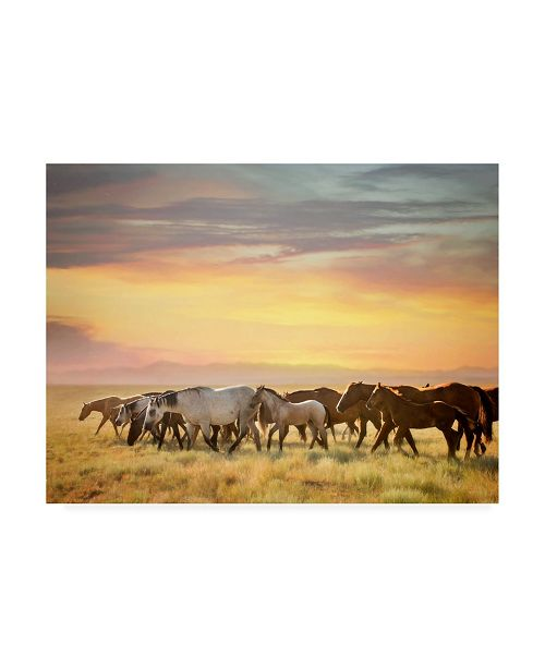 "Trademark Global PH Burchett Sunkissed Horses I Canvas Art - 15.5"" x 21"""