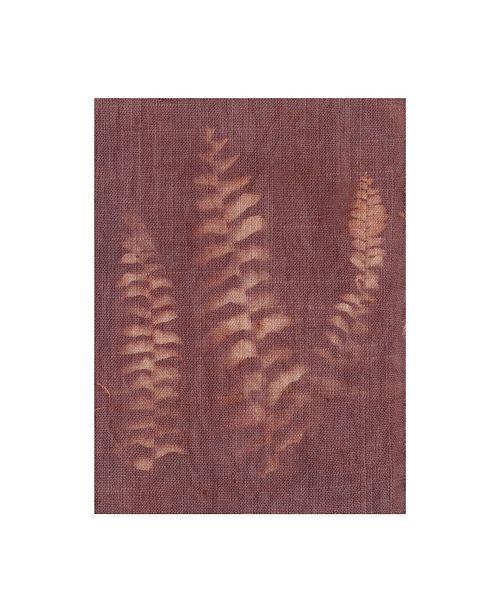 "Trademark Global Natalie Sizemore Botanical Sun IV Canvas Art - 36.5"" x 48"""