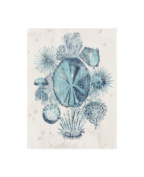 "Trademark Global June Erica Vess Coastal Melange IV Canvas Art - 15.5"" x 21"""