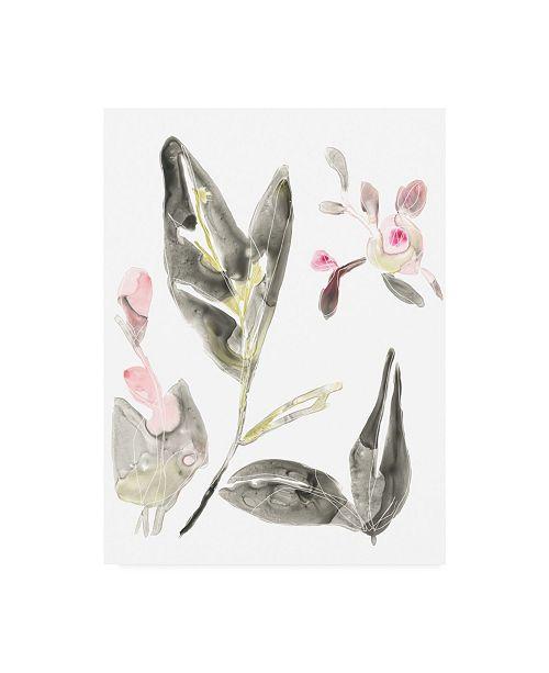 "Trademark Global June Erica Vess Shadow Garden I Canvas Art - 15.5"" x 21"""