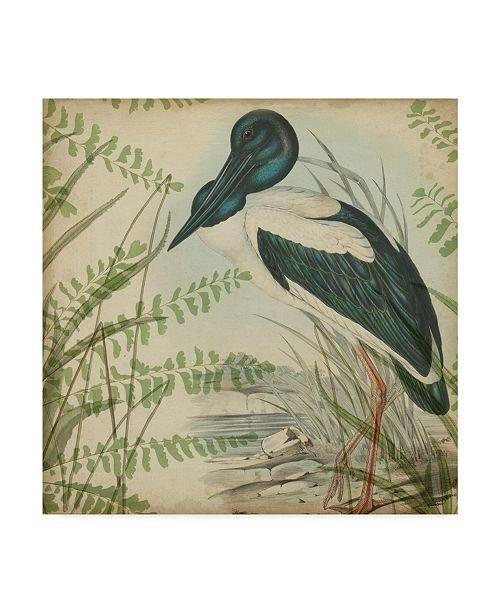 "Trademark Global Vision Studio Heron and Ferns I Canvas Art - 20"" x 25"""