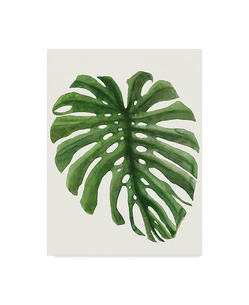 "Trademark Global Naomi Mccavitt Tropical Breeze Leaves I Canvas Art - 37"" x 49"""