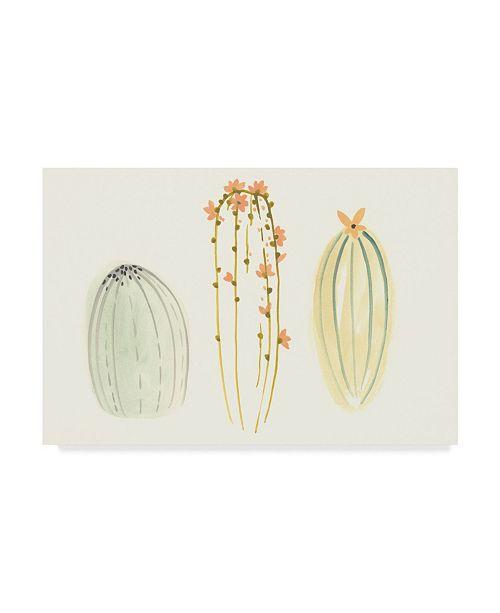 "Trademark Global June Erica Vess Funky Succulents I Canvas Art - 37"" x 49"""
