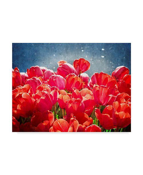 "Trademark Global Rachel Perry Fuchsia Tulips I Canvas Art - 37"" x 49"""