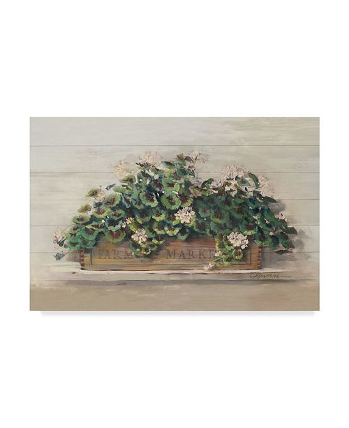 "Trademark Global Carol Rowan Market Geraniums Farmers Market Crop Canvas Art - 20"" x 25"""