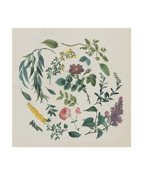 """Trademark Global Wild Apple Portfolio Victorian Garden I Canvas Art - 15"""" x 20"""""""
