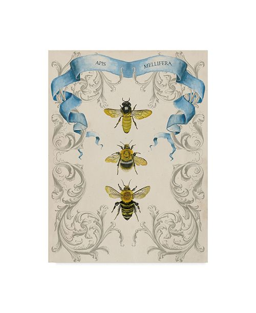 "Trademark Global Naomi Mccavitt Bees and Filigree II Canvas Art - 37"" x 49"""