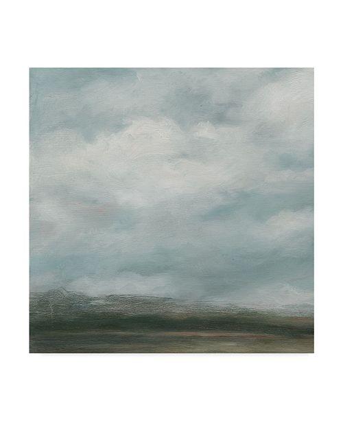 "Trademark Global Ethan Harper Cloud Mist I Canvas Art - 27"" x 33"""
