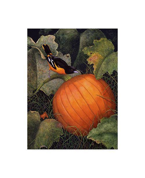 "Trademark Global Marcia Matcham Oriole and Pumpkin Canvas Art - 37"" x 49"""