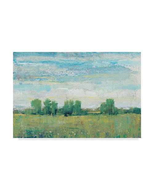 "Trademark Global Tim Otoole Splendor in Spring I Canvas Art - 20"" x 25"""