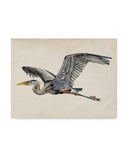 "Trademark Global Melissa Wang Blue Heron Rendering III Canvas Art - 20"" x 25"""