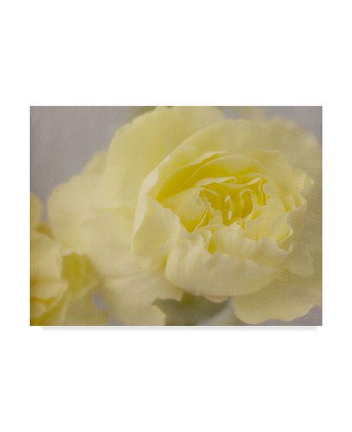 "Trademark Global Judy Stalus Rose Whisper III Canvas Art - 37"" x 49"""